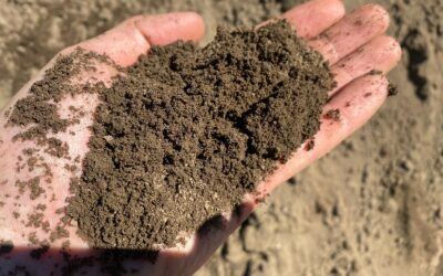 Topsoil Vs Compost: Which should you be using?